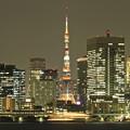 写真: 東京夜景