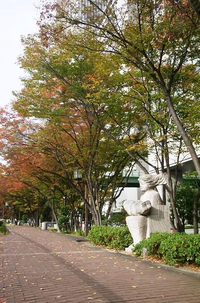 中之島緑道01