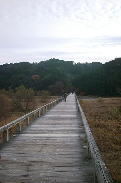 蓬莱橋08