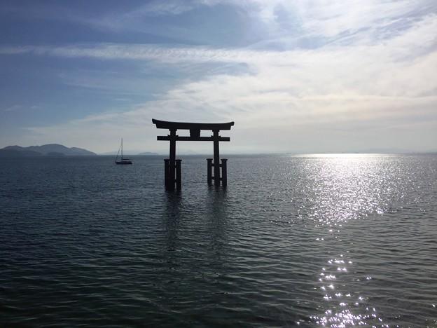 写真: 白鬚神社11