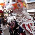 キャー:春節祭12