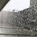 狭山池博物館09