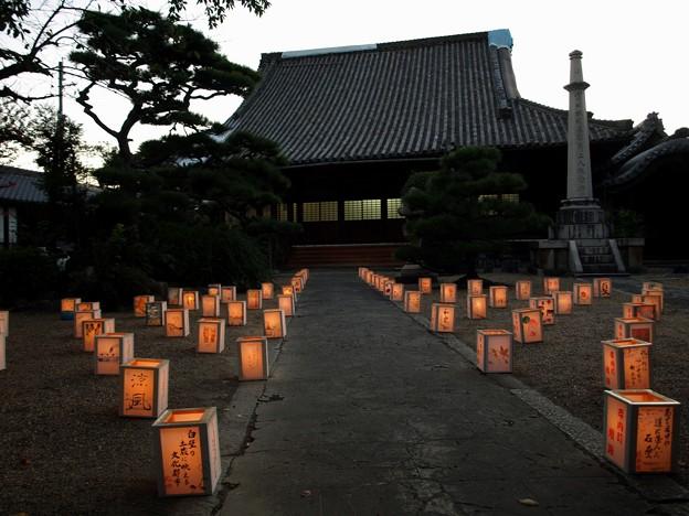 重要文化財・興正寺別院 (富田林御坊):富田林寺内町15