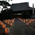 写真: 重要文化財・興正寺別院 (富田林御坊):富田林寺内町15