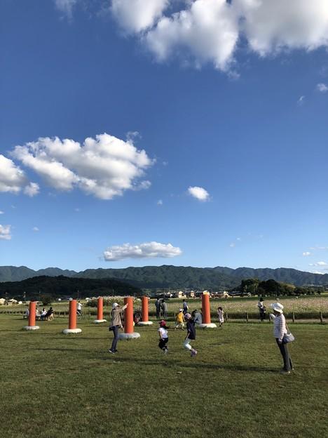 写真: 藤原宮跡の休日