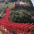 元乃隅稲成神社04 123基の鳥居