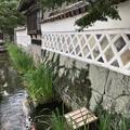 Photos: 津和野12:殿町通り