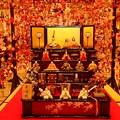 写真: お雛様と吊し雛~京王プラザ