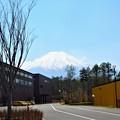 忍野村からの富士山