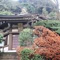 写真: 鎌倉 長勝寺