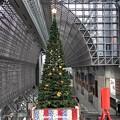 ツリー~京都駅