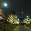 写真: 横浜アメリカ山庭園