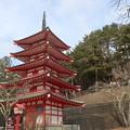 五重塔~新倉山浅間神社