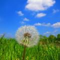 写真: 青空に向かって出発を・・