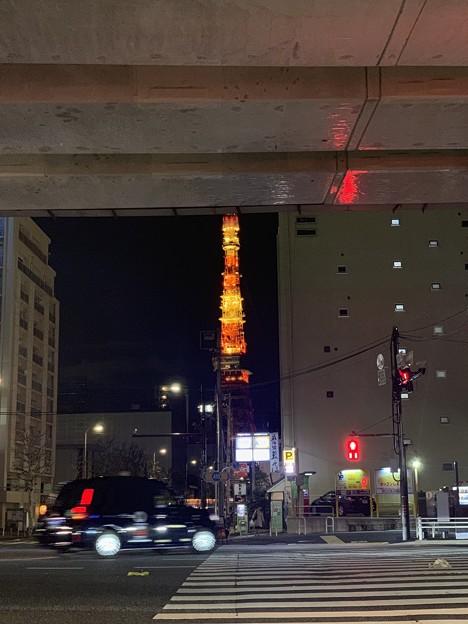 東京タワーときどきわたし