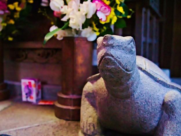 亀ヶ池弁財天 狛亀