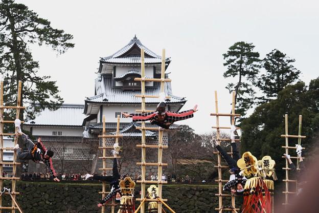 加賀とび(5) 「鶯の谷渡り」 金沢市消防出初式