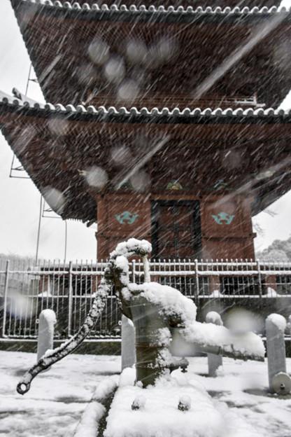 雪の本門寺