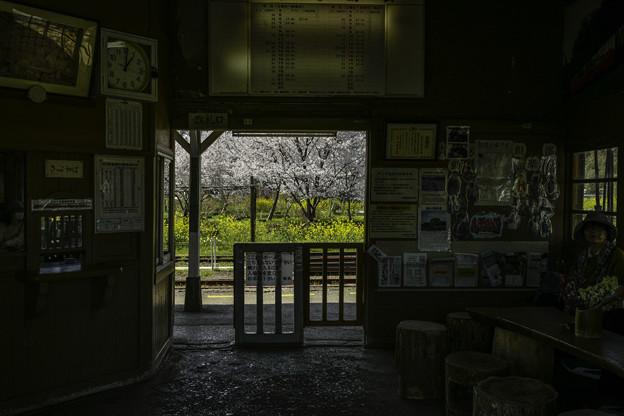 ゆる鉄「さとみ駅」
