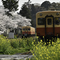 Photos: さとみ駅にて