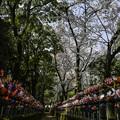 写真: 千躰子育地蔵菩薩