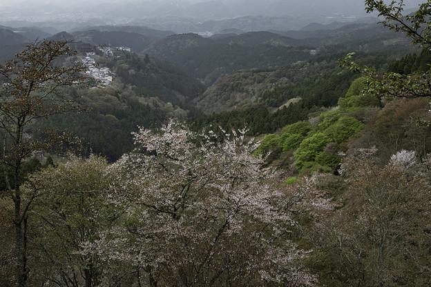 吉野山奥千本