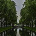 写真: 世界で一番優雅な並木道