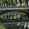 Photos: 世界で一番優雅な並木道