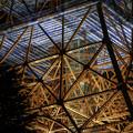写真: 東京タワー