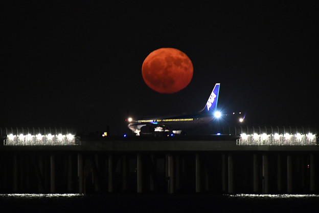 Photos: 満月の日