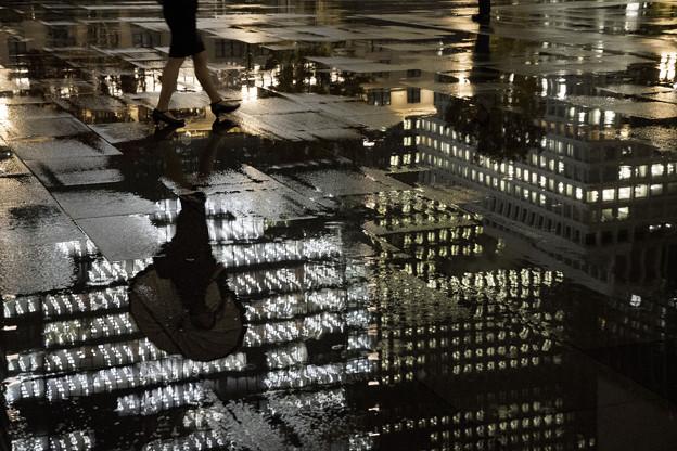写真: 雨鏡