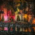 Photos: ライトアップ「三十槌の氷柱」