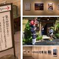 Photos: 第79回国際写真サロン入賞作品展_edited-1