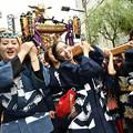 Photos: 女神輿「担ぐ」