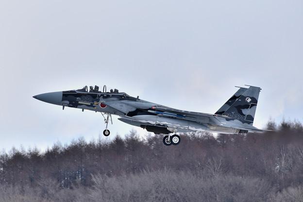 2019年2月13日 飛行教導群 070号機 千歳基地