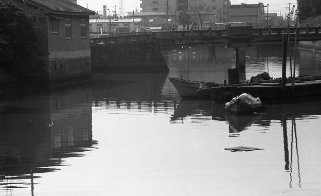 Photos: 昭和53年 土居川