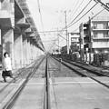 写真: 昭和53年 出島線踏切