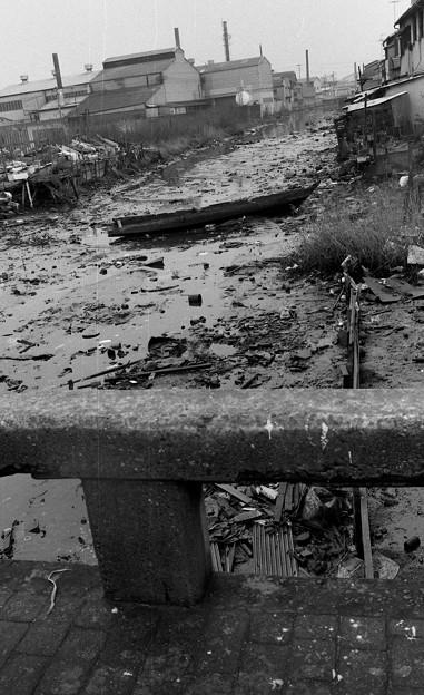 S53海山橋から見た土居川