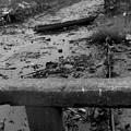 Photos: S53海山橋から見た土居川