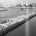 写真: S53 旧堺港周辺3