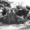 Photos: S53 大浜公園内の巨石