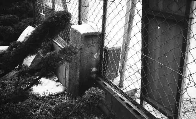 Photos: S53 山之口橋の親柱