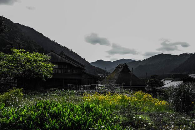 ニッポンの初夏