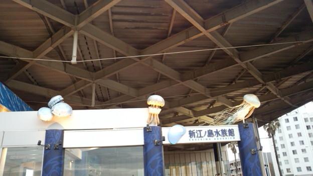 ギリ平成最後の夏の名残に行ってきた。