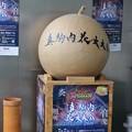 Photos: 第8回 真駒内花火大会 開始前 (3)