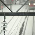 写真: 凍てつく