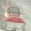 写真: 大粒の雪