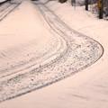 写真: 冬真っ盛り