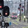 写真: 冷たい雨の秋田駅5