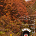 写真: 紅葉の刺巻トンネル